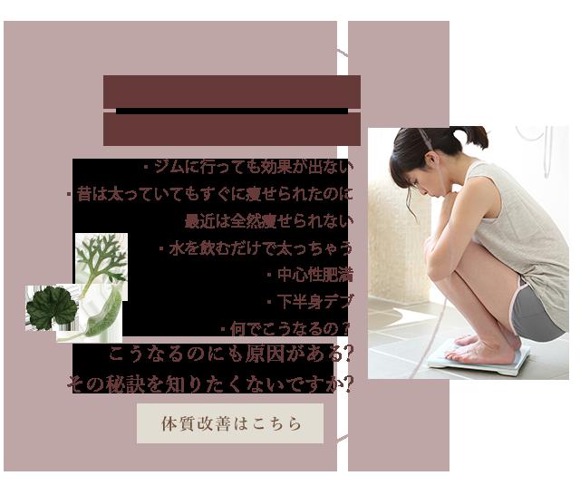 sp_nayami02_banner